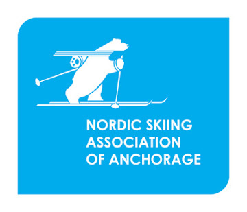 NSAA Logo-reverse