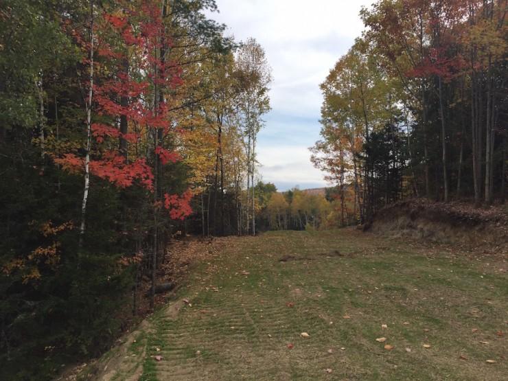 584e0 ski trail back to stadium