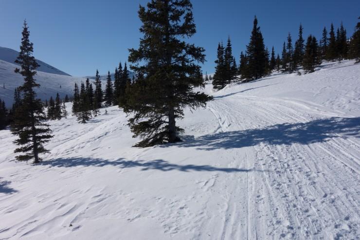 7686c ski DSC02343