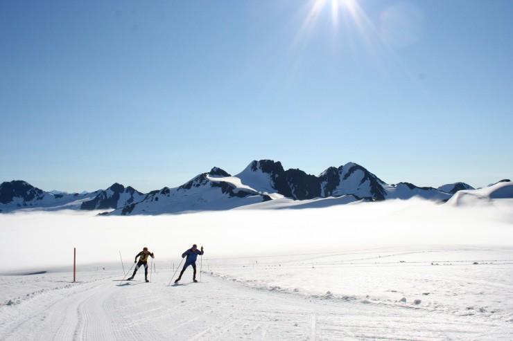 929d6 ski image1