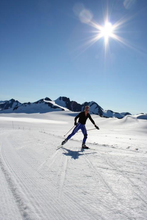 929d6 ski image3