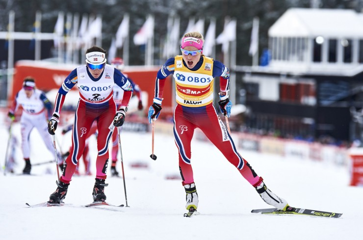 Therese Johaug (r) leads Norwegian teammate Heidi Weng during the women's ten k freestyle mass commence at the Planet Cup in Falun, Sweden. The duo went on to spot initial and second, respectively. (Photograph: Fischer/NordicFocus)